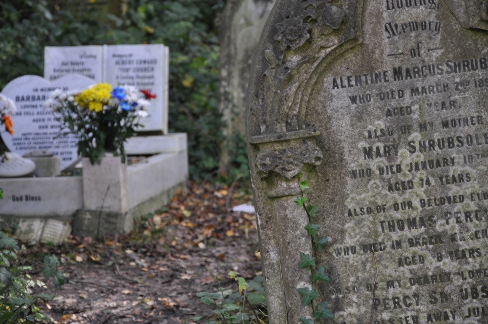Abney Park Cemetery, London, November 2013