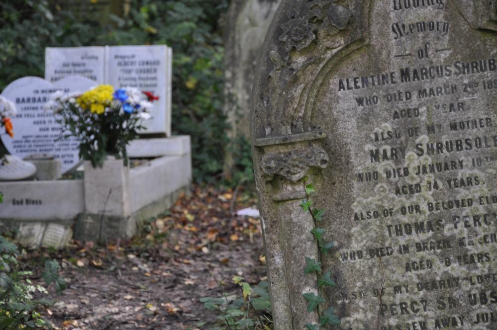 Abney Park Cemetery, London, November 2013