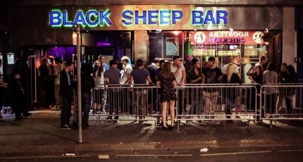 Black sheep3