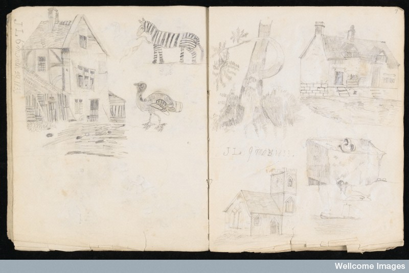 L0016923 A page from Lister's sketchbook, 1832-34