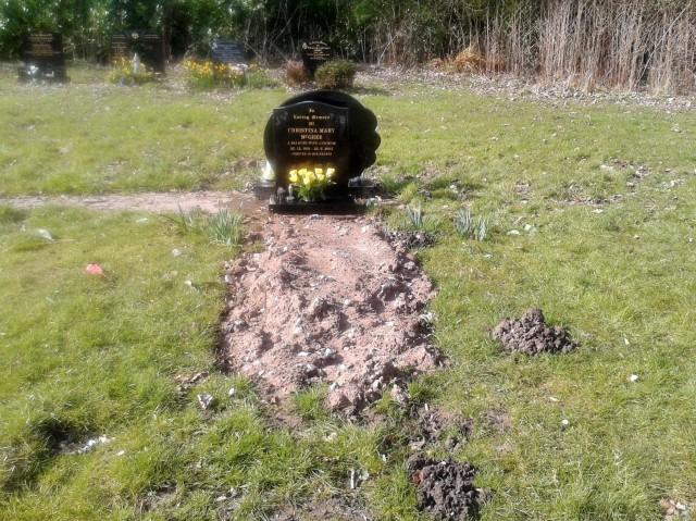 50 Mum & Dad's Grave