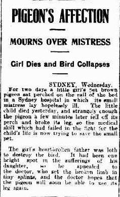 News Hobart Tas Wednesday 23 December 1925